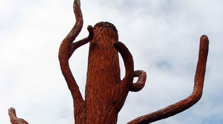 photo of Frans Krajcberg, Burned tree