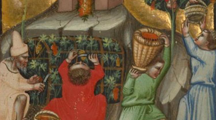 The J. Paul Getty Museum Harvest Scene; Italian (Bologna), before 1340