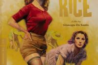 Bitter Rice Criterion Front Cover